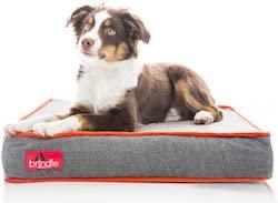 Brindle Waterproof Memory Foam Pet Bed