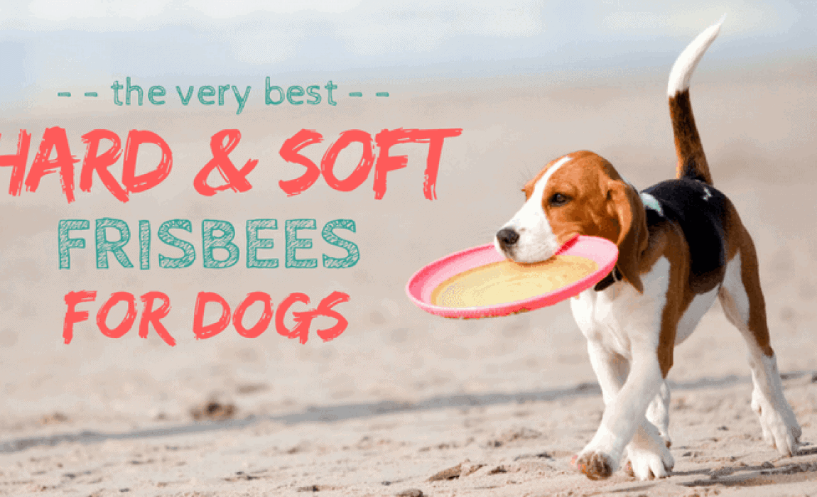 Hyperflite JAWZ Dog Frisbee Disc Adult Size Flying Disc Puncture Resistant Safe