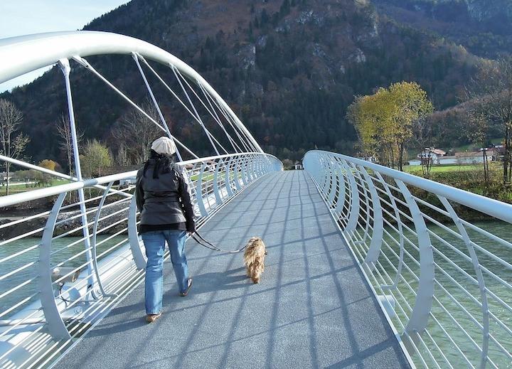 how often walk dog
