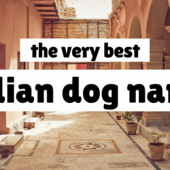 110+ Video Game Dog Names: Characters, Consoles, & More!