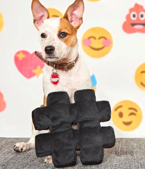 hashtag emoji squeaky toy