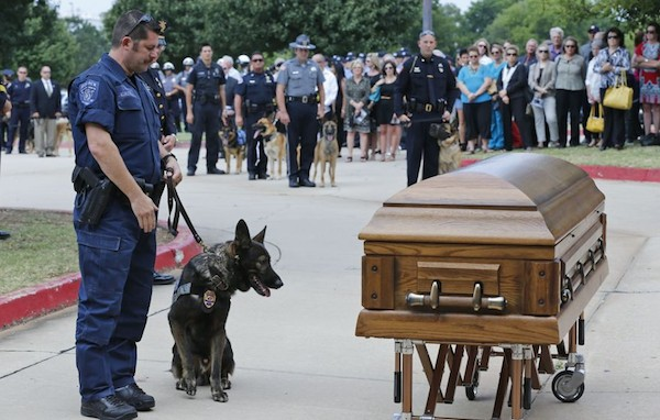 kye famous police dog