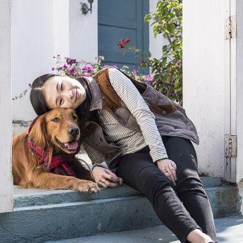 screen-doors-for-dogs