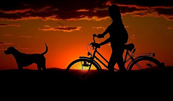 dog_leash_bike