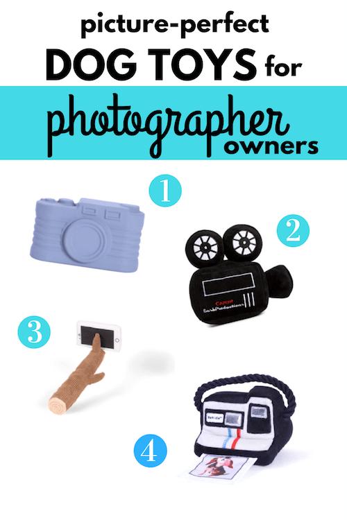 photography dog toys