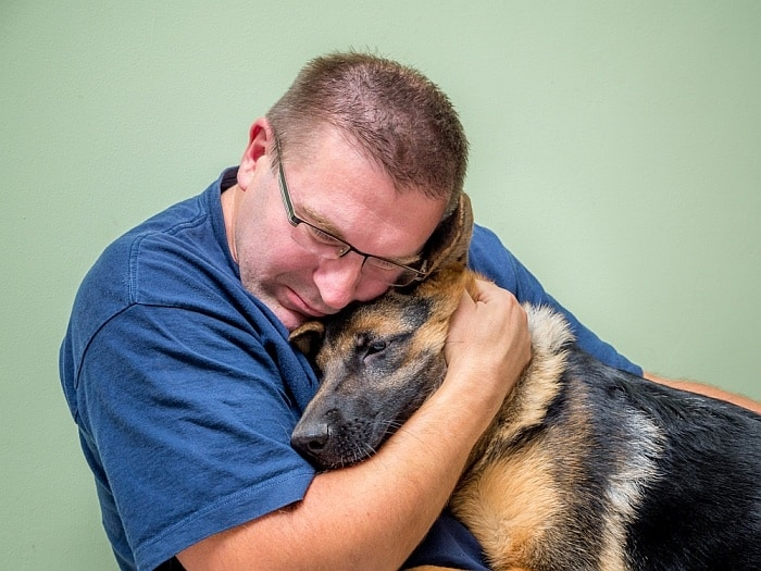 How to surrender your dog