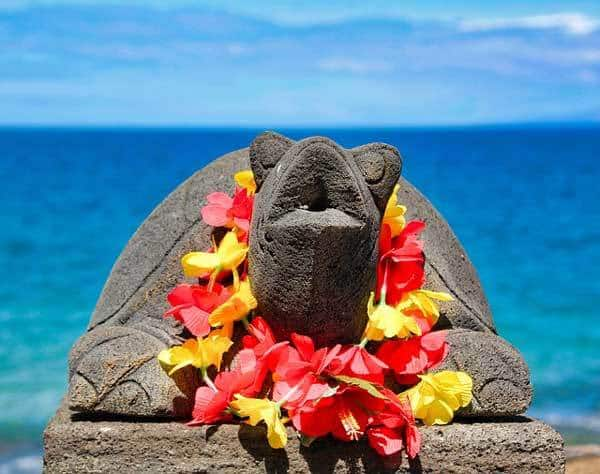 100+ Hawaiian Dog Names: Island Inspiration For Your Canine!