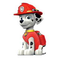 marshall-pup-patrol