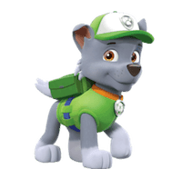 rocky-pup-patrol