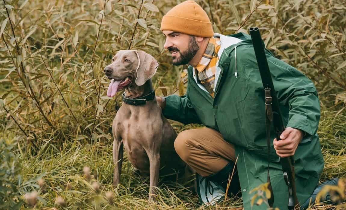 82a9f7789b2d6 Dogs are fantastic hunting companions. They not only provide a bit of  company, they can help you achieve success in the field. Most hunting dogs  are tasked ...