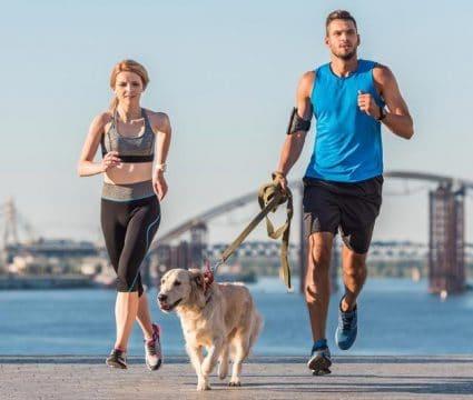 preparing-dog-for-long-distance-running