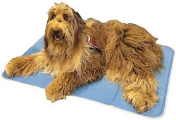 The Green Pet Shop Cooling Pad