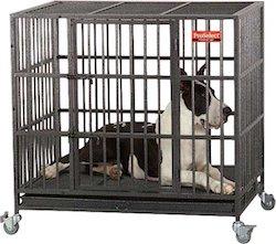 proselect dog cage