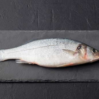 Whitefish for Dogs