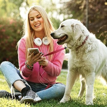 best dog podcasts