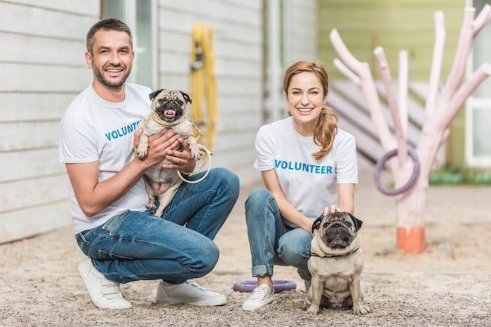 dog shelter volunteers