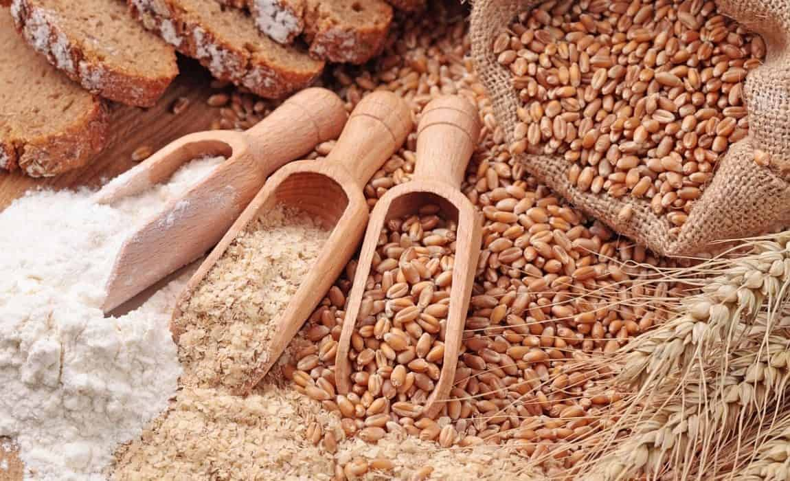 Grain-free food for dogs