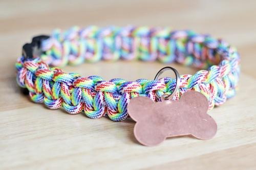 rainbow-paracord-dog-collar