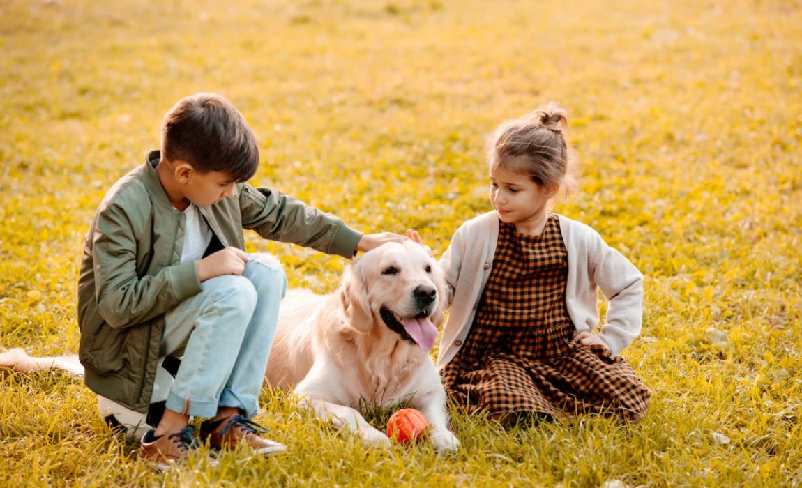 Pets Bring Kids With Autism Out Of >> 12 Best Dog Breeds For Autsitic Children Service Dogs With Big Hearts