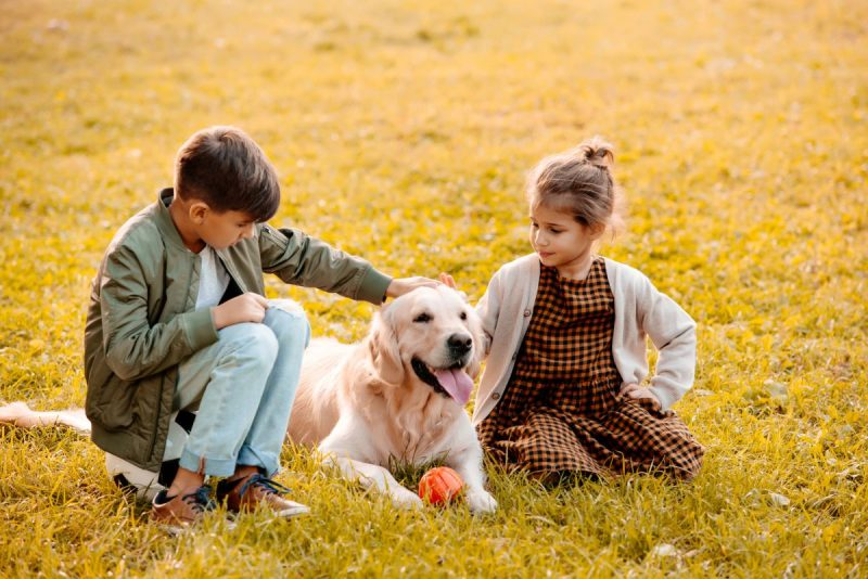 Dogs for Autistic Children