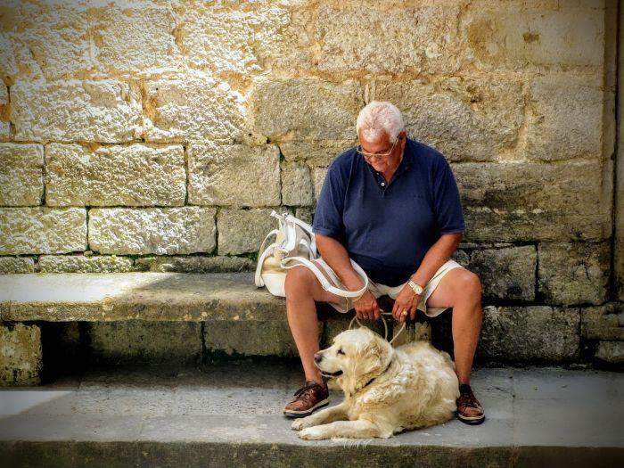 Leashes for Arthritis