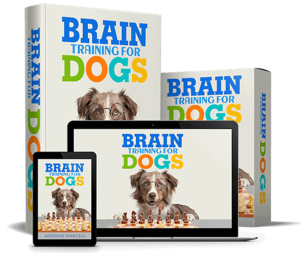 brain-train-for-dogs