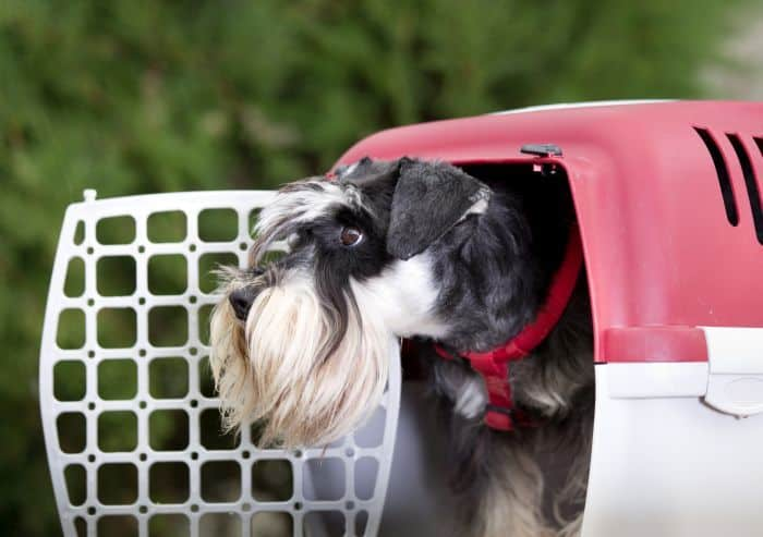 Good Puppy Crates