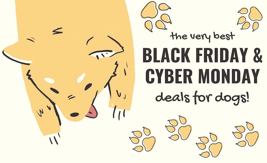 2020 Best Black Friday Cyber Monday Dog Deals Steals