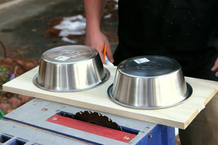 DIY Feeder for Dogs