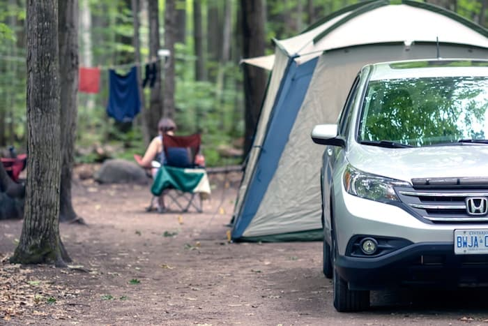 car-camping-with-dog