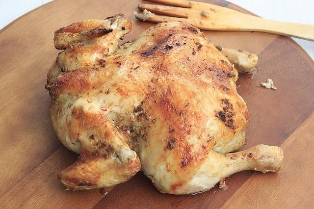 chicken-dog-meat
