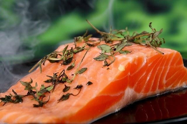 salmon-dog-meat