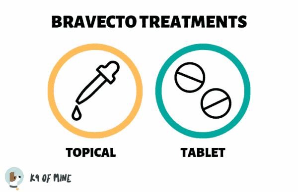bravecto-treatments