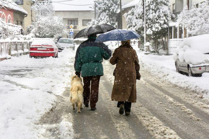 De-Icer Safe for Dogs