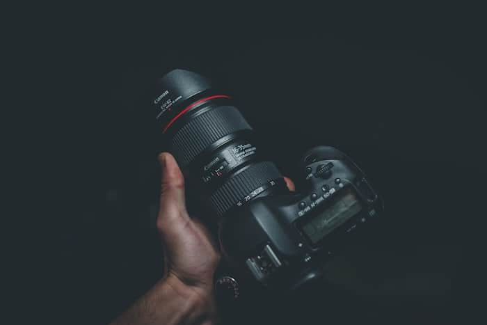 dog photography camera