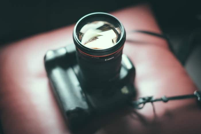 pet-photography-camera-gear