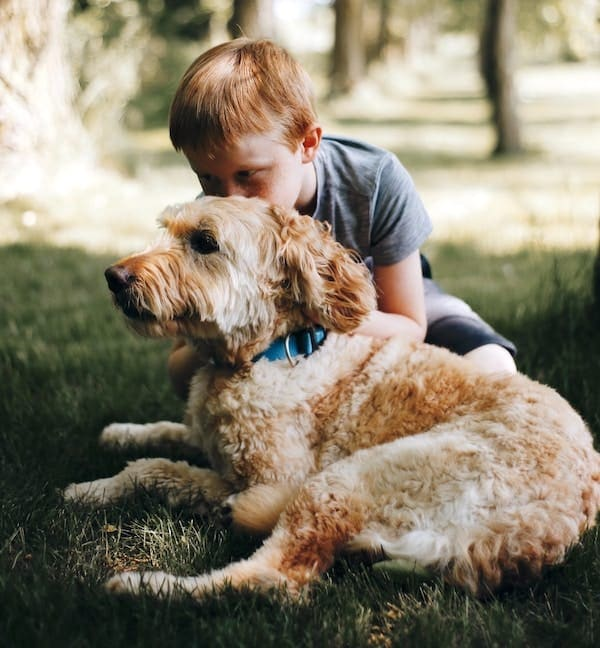 unknown dog with child