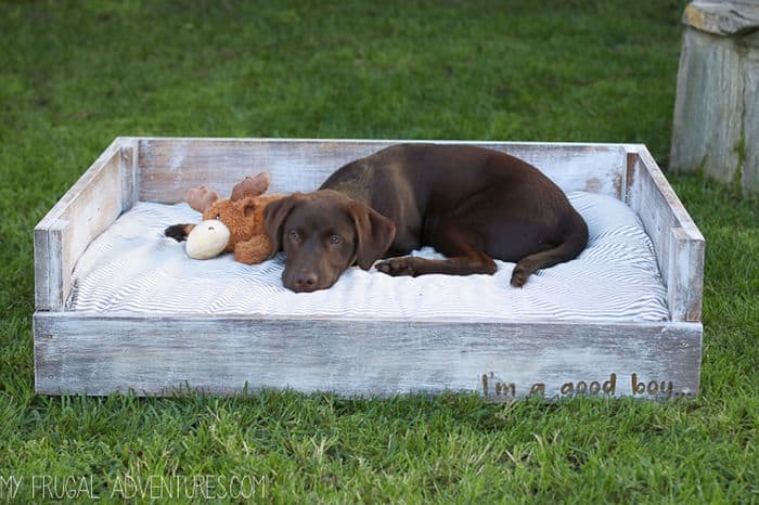DIY Dog Bed from Wood