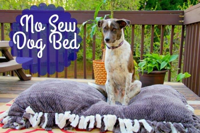 DIY No Sew Dog Bed