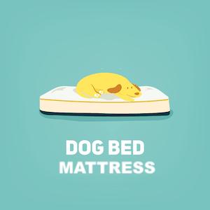mattress-dog-bed