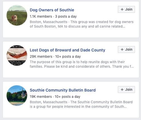 foster facebook groups