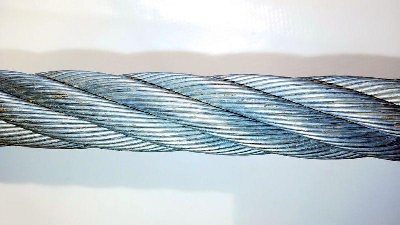 wire dog leash