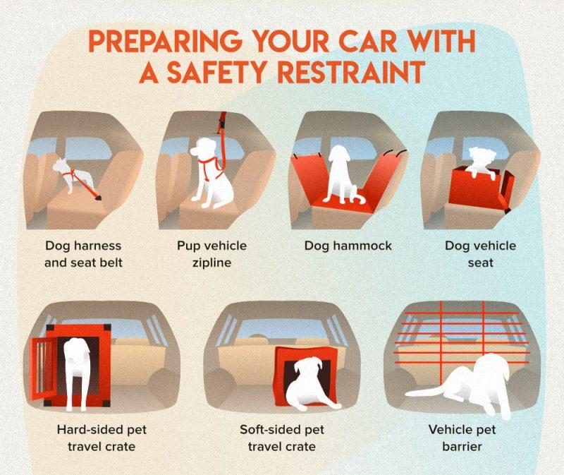 types of car restraints