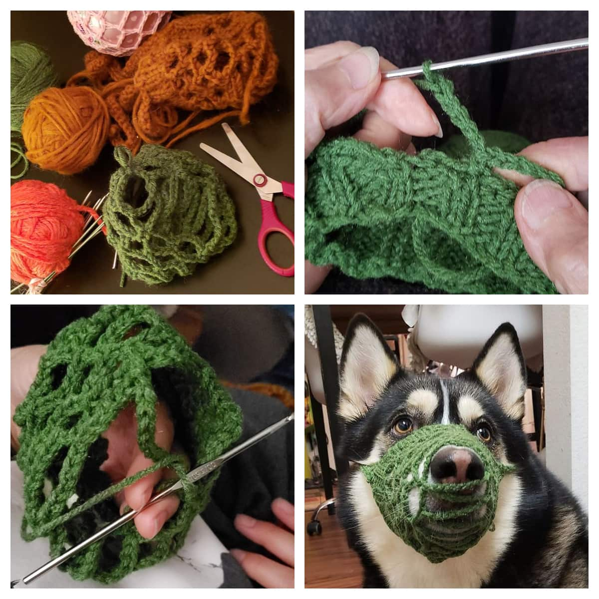 6 DIY Dog Muzzles: Make Your Own Muzzle!