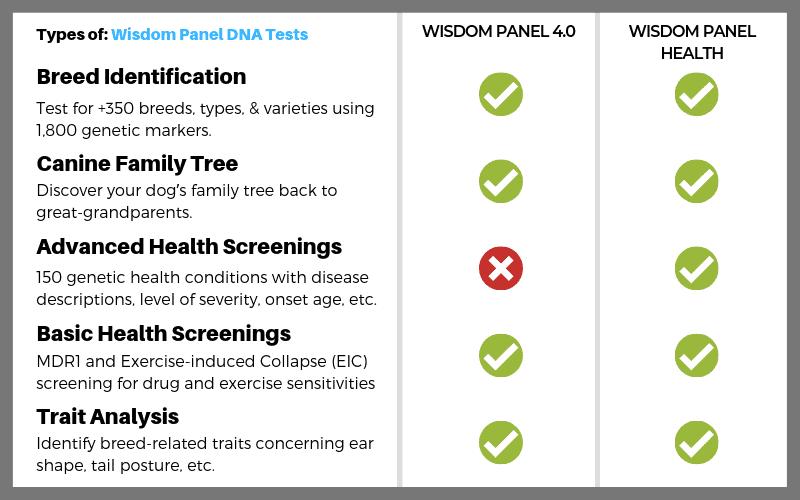 wisdom panel dog dna test comparison