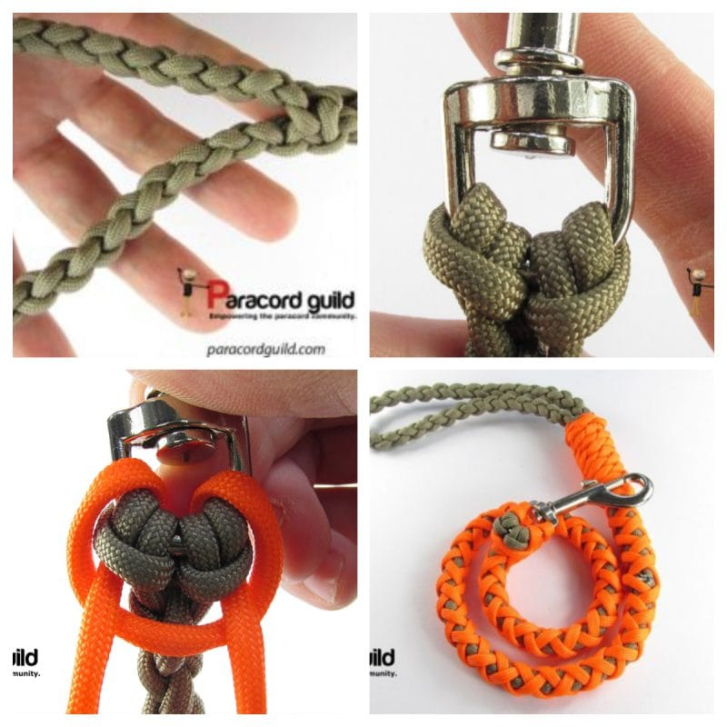 DIY Leashes from Paracord