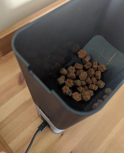 petcube treat container