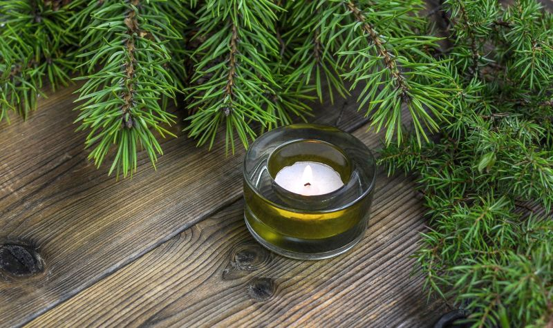 Scented Candles for Pet Odors
