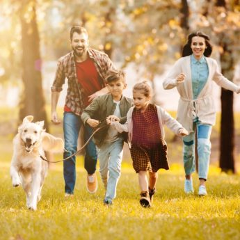 Dogs for Busy Families