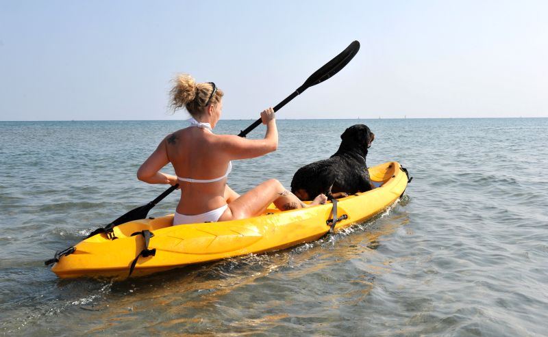 can you kayak with a dog